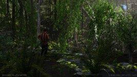 Striped Encounter in Willow Creek.jpg