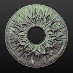 iris_sculpt.jpg